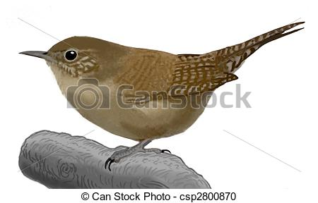 Wren clipart #2, Download drawings
