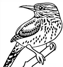 Wren clipart #14, Download drawings
