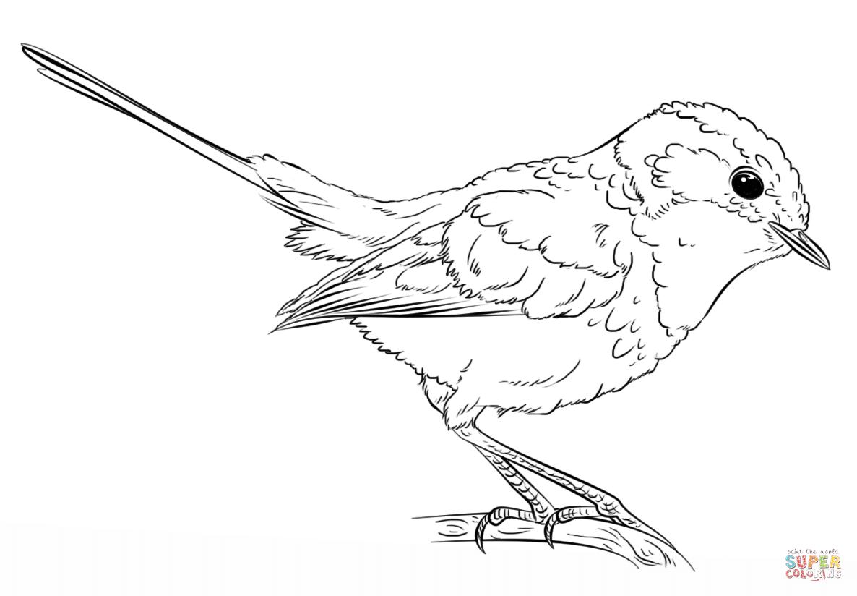 Wren coloring #16, Download drawings