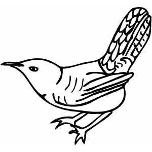 Wren coloring #9, Download drawings