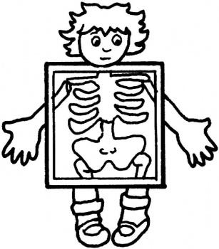 X-ray clipart #5, Download drawings