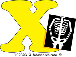 X-ray clipart #17, Download drawings