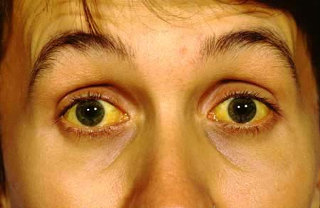 Yellow Eyes coloring #4, Download drawings