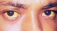 Yellow Eyes coloring #1, Download drawings