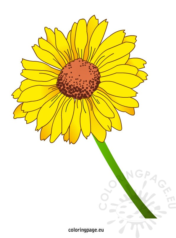 Yellow Flower coloring #13, Download drawings