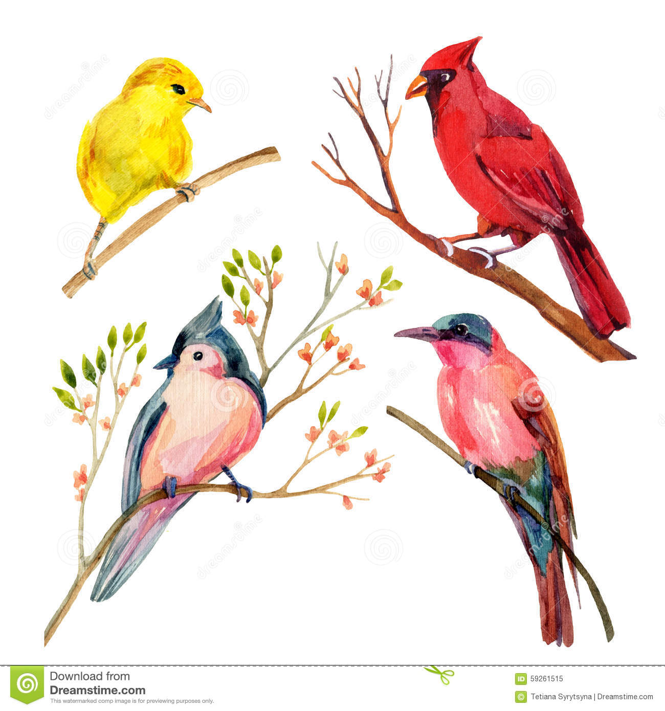 Yellow Warbler clipart #11, Download drawings
