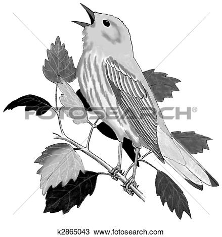 Yellow Warbler clipart #19, Download drawings
