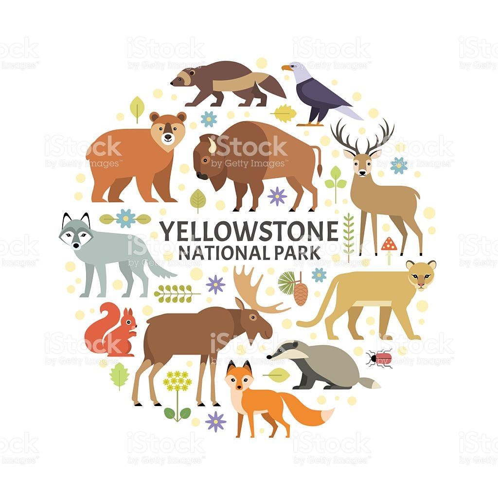Yellowstone clipart #5, Download drawings