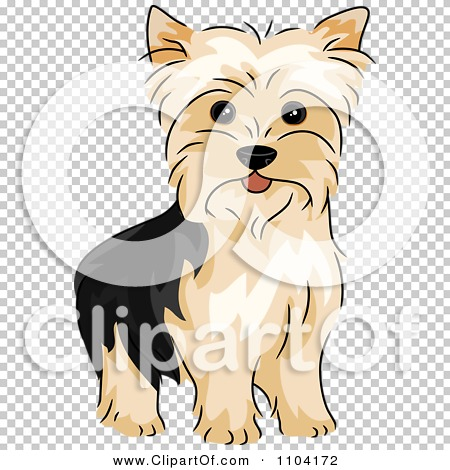 Yorkies clipart #11, Download drawings