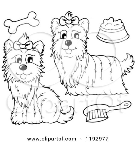 Yorkies clipart #5, Download drawings
