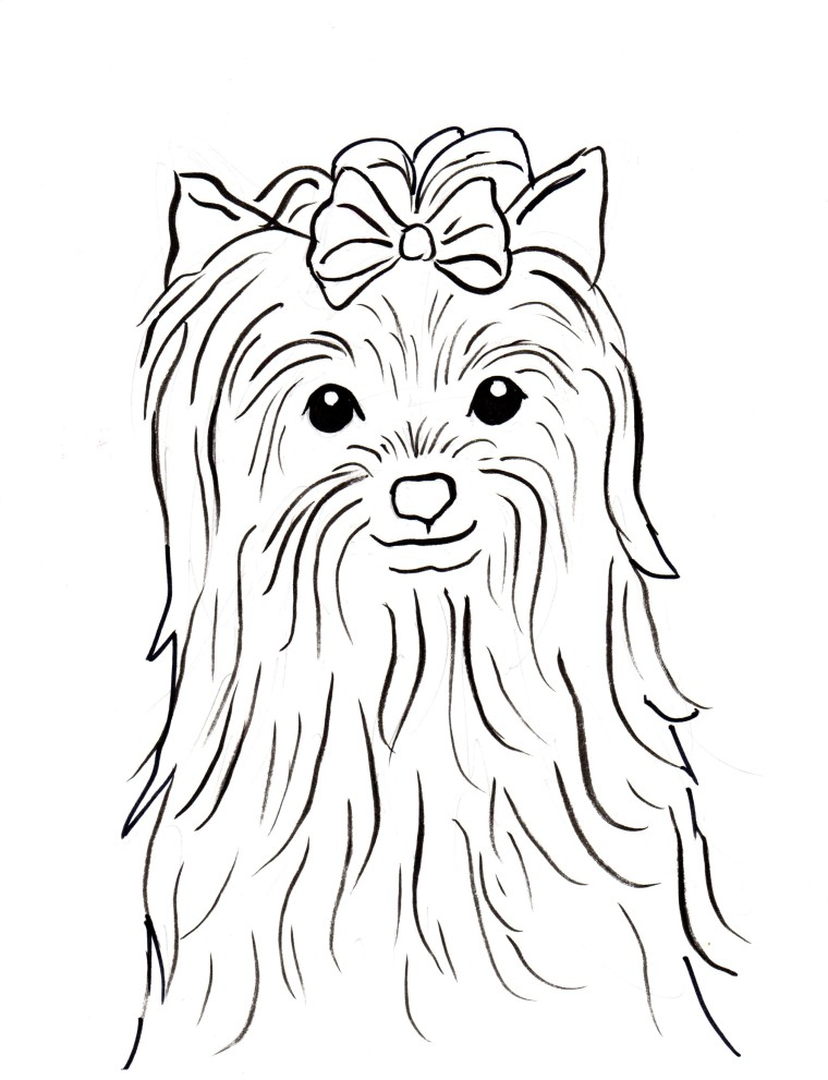 Yorkshire Terrier coloring #4, Download drawings