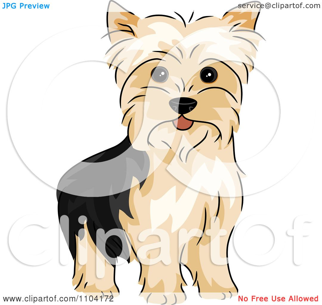 Yorkshire Terrier clipart #1, Download drawings