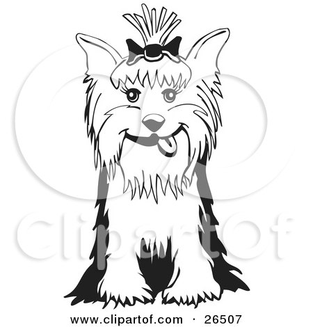 Yorkshire Terrier clipart #2, Download drawings