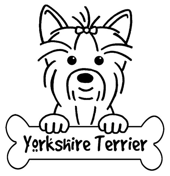Yorkshire Terrier coloring #9, Download drawings