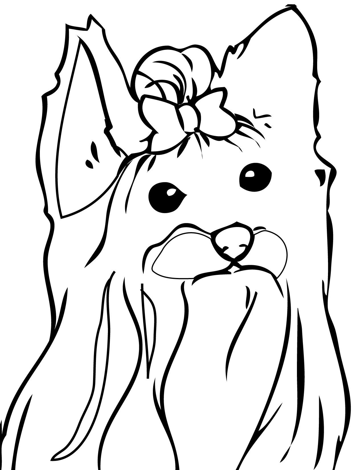 Yorkshire Terrier coloring #3, Download drawings