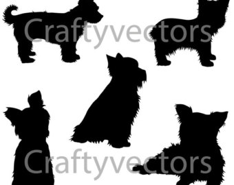 Yorkshire Terrier svg #4, Download drawings