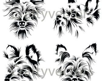 Yorkshire Terrier svg #17, Download drawings
