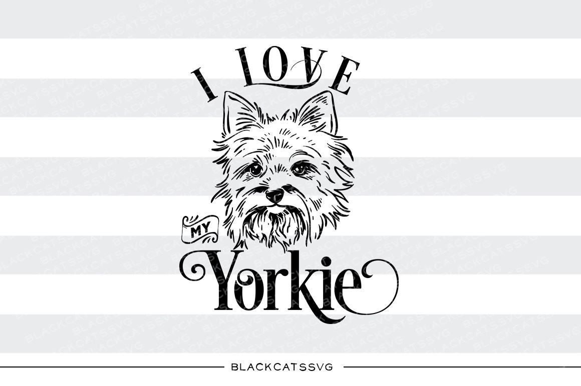 Yorkshire Terrier svg #15, Download drawings