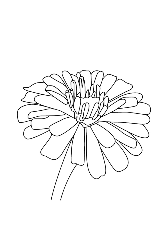 Zinnia coloring #10, Download drawings