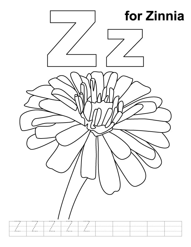 Zinnia coloring #4, Download drawings