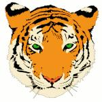 Siberian Tiger clipart
