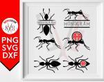 Ants svg