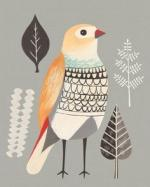 Beautiful Firetail svg