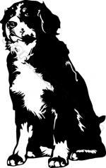 Bernese Mountain Dog clipart
