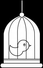 Birdcage coloring