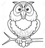 Brown Hawk Owl coloring
