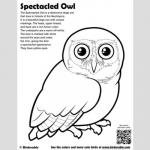 Spectacled Owl coloring