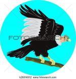 California Condor  clipart