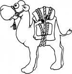 Camel Caravan coloring