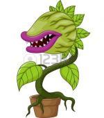 Carnivorous Plant clipart