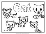 Cat & Dog coloring