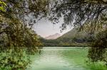 Cavazzo Lake svg