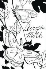 Cecropia Moth coloring