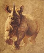 Charging Rhino svg
