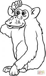 Chimpanzee coloring