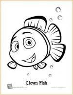 Clownfish coloring