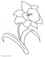 Daffodil coloring