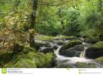 Dartmoor National Park clipart