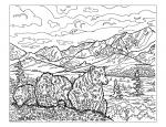 Denali National Park coloring