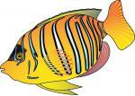 Discus Fish svg