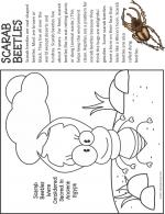 Dung Beetle coloring
