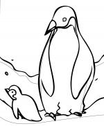 King Emperor Penguins coloring