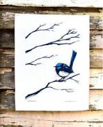 Fairy-wren clipart