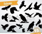 Falcon svg