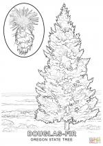 Fir Tree coloring