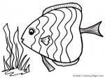 Fish coloring